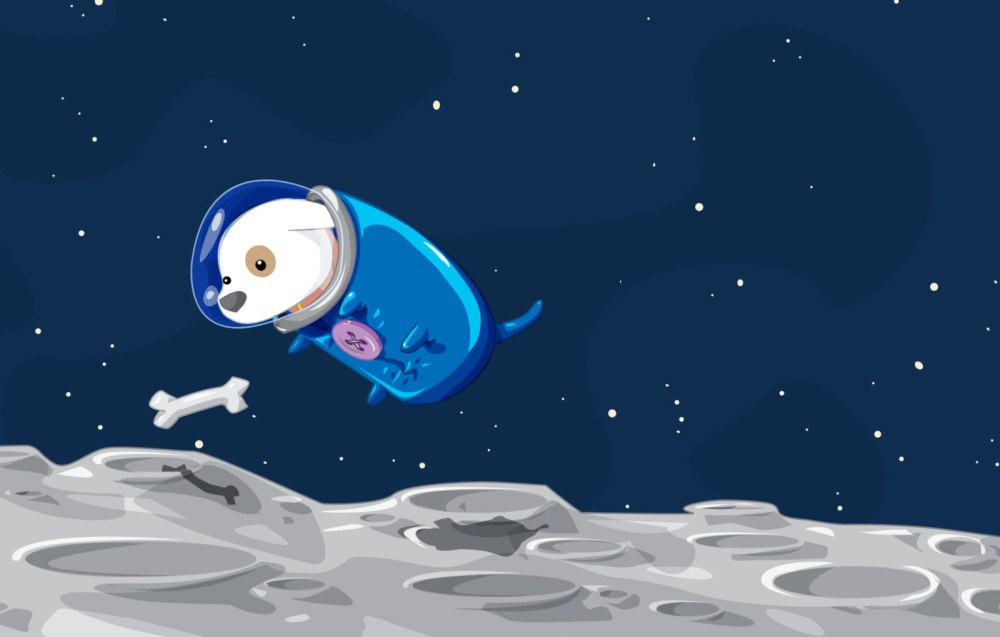 space-doggy