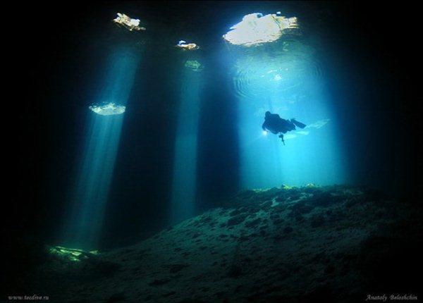 UnderwaterCollectionsByPhotographerAnatolyBeloshchin27