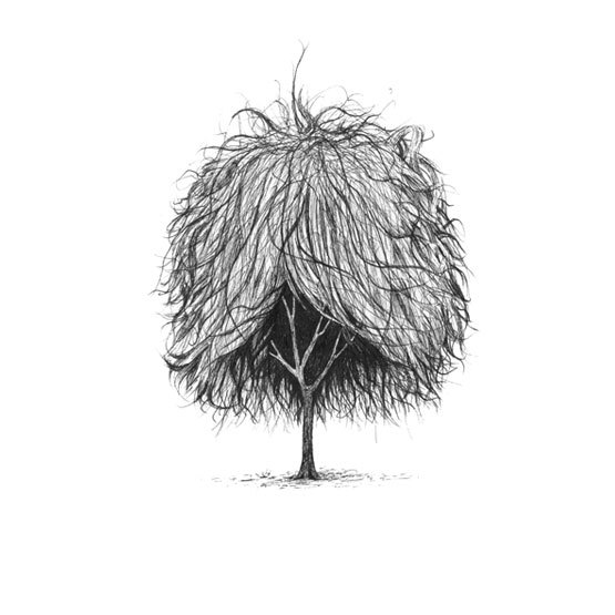 10-Trees-With-Haircuts