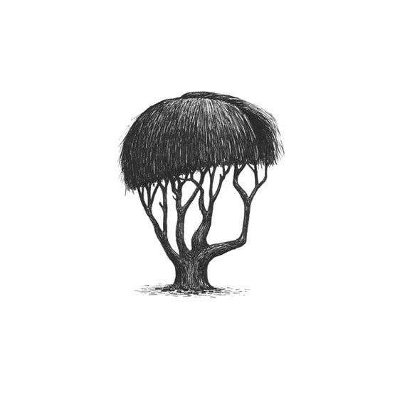 2-Trees-With-Haircuts