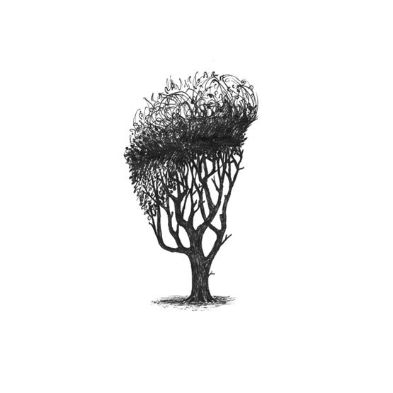9-Trees-With-Haircuts