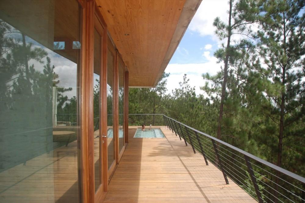 pool-and-lush-vegetation
